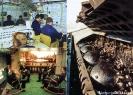 ПЛАРК проекта 949А. Центральный пост. Ракетные шахты.